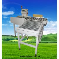 China Automatic online heavy duty checkweigher conveyor weight scale wholesale