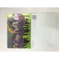 China 0.6MM PET 3D Lenticular Postcards / 3d animation picture With CMYK Printing wholesale