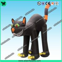 China Halloween Advertising Inflatable Cat, Halloween Decoration Inflatable Cat wholesale