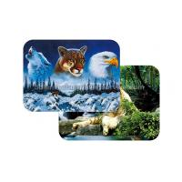 China Waterproof Plastice 3D Lenticular Placemats Directly Printing PET wholesale
