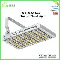 China UL CE RoHs Certifications Metal Halide Led Tunnel Lighting With Philips Chip wholesale