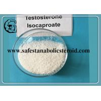 Quality CAS 15262-86-9 Testosterone Isocaproate Hormone Powder 99% Muscle Building Steroid for sale