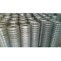 China 1/4 X 1/4 Building Reinforcing Welded Steel Mesh Hot Dipped Galvanized / Electrogalvanized wholesale
