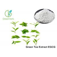 EGCG Green Tea Extract Anti - Tumor Effect For Pharmaceutical Industries