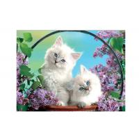 Quality Cartoon 3D Lenticular Pictures PET for Kid's Room Decoration for sale