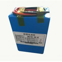 China 8000mah 9.6V Lithium Ion Battery For Farm Insecticidal Lamps wholesale