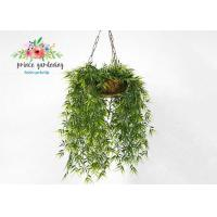 Buy cheap Customized Steel Wire Hanging Flower Baskets , Hanging Plant Pots from wholesalers
