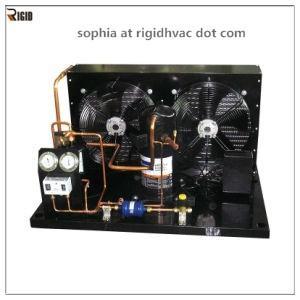 China 3HP R404 Freezer condenser unit/refrigeration cycle/walk in freezer/ walk in frigerator/ture refrigeration wholesale