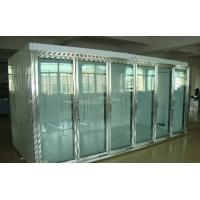 China Back Side Loading Glass Door Freezer Large Capaciy Remote System Copeland Compressor wholesale
