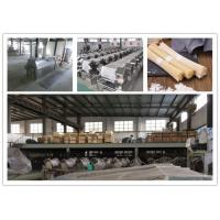 China Performance Vermicelli Production Line wholesale