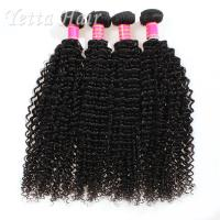 China Kinky Curly Burmese Virgin Hair Bundles , No Tangle Real Wavy Hair wholesale