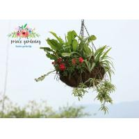 Buy cheap Semi-Circle Light Weight Hanging Planter Basket For Home & Garden from wholesalers