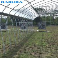 China Fan And Pad Greenhouse Cooling System Increase Air Cycle Easy Installed on sale