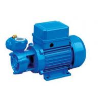 China Electric Clean Water Pump Electrophoresis Anti Rust Treatment 0.5HP / 0.37KW on sale