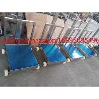 China Movable Bench Weighing Scale With Wheels / Back Rail 60 X 80cm 500kg ROHS Approved wholesale