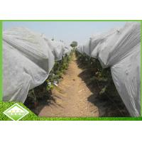 China 50GSM Agriculture Garden Weed Control Fabric 100% PP Spunbonded Nonwoven Fabric wholesale