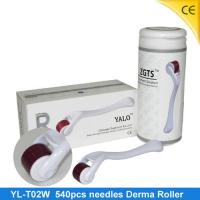 China White Microneedle / Micro Derma Roller For Hair Loss Treatment / 540 Derma Roller YL-T02W wholesale