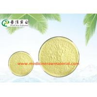 China Natural Sophora Japonica Extract , Pure Plant Extracts 95% Quercetin Antioxidant wholesale
