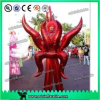 China Holiday Festival Parade Decoration Inflatable Cartoon Walking Costume Wing Inflatable wholesale