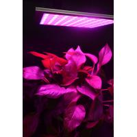China Energy Efficiency Hydroponic Led Grow Lights For Indoor Gardening Alluminum Material wholesale