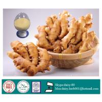 China GMP 100% Natural Ginger Extract on sale