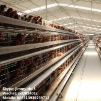 China Galvanized Mesh Layer Poultry Chicken Rearing Cages For 10000birds Poultry Chicken Coops Design wholesale