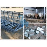 Quality Hot-dip galvanized Head Lock Fence Panel for Cattle Ranch / Sheep for sale
