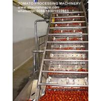 China China professional supplier of tomato paste production line/tomato sauce making machine/tomato processing on sale