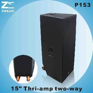 China Professional Speaker (P153) wholesale
