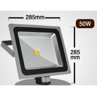 China 50W led flood light with motion PIR sensor Brigelux led meanwell driver high quality CE wholesale