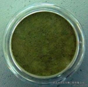 China Copper Amino Acid Chelate on sale