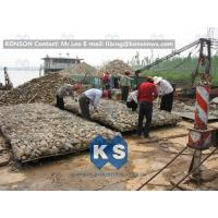China Double Twisted Hexagonal Gabion Mesh Hot Dip Galvanized Wire Reinforced Structure wholesale