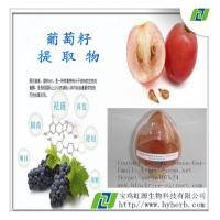 Quality Grape Seed Extract For Skin Wrinkles for sale