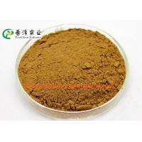 China Anti Histamine Apple Natural Plant Extracts 25% Quercetin For Preventing Cancer wholesale