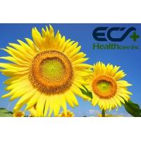 China Natural Brain Health Supplements Free Flowing Sunflower Powder CAS  84776 79 4 wholesale