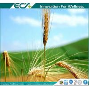 China Premium Health Supplements, Zero- added, Instant Oat Powder, Low viscosity, GREAT Taste ; Natural origin wholesale