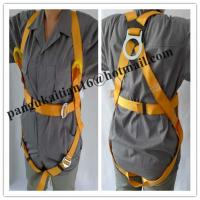 China safety harness &safety belt &safety webbing wholesale