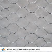China Hexagonal Wire Netting/Hex Decorative Wire Mesh|Used for  Fencing Gabion wholesale