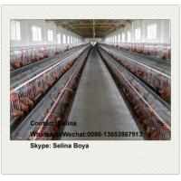 China Poultry layer battery chicken cage for Nigeria Kenya South Africa Tanzania Uganda farm wholesale