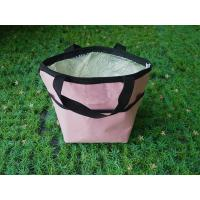 China Outdoor Insulated Picnic Travel Cooler Bag Large Capacity For Hiking wholesale