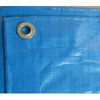China blue PE Tarpaulin best for pool cover wholesale