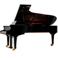 China 275cm 88 Key Upscale Luxurious Royal Conservatory Piano Solidwood AG-GP275 wholesale