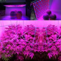 China 1000 Watt RED Led Grow Lamp For Cannabis And Marijuana , Aluminum Body wholesale