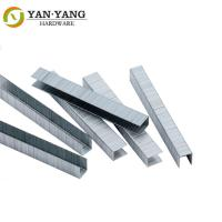 China 21 Gauge 80 Series Staples Galvanized Wire Staple For Furniture  8014 wholesale