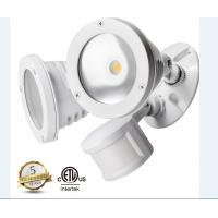China JIEJIE 1100LM*2 LED Outdoor Security Lighting on sale