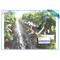 China Anti UV PP Non Woven Landscape Fabric for Agricultural Area as Ground Coverings or Plant Bags wholesale