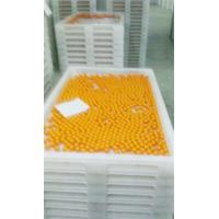 China Anti High Temprature Plastic Drying Trays Pe Material For Drying Freezing Baking wholesale