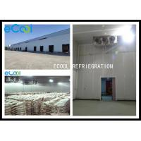 China Frozen Meat Cold Storage , Steel Structure Cold Storage For Meat Products wholesale