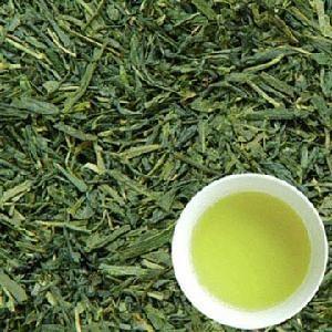 China natural Japanese organic sencha green tea china export on sale