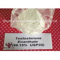 China Keeping Young Anabolic Steroid Test E Steroids Testosterone Enanthate CAS 315-37-7 wholesale